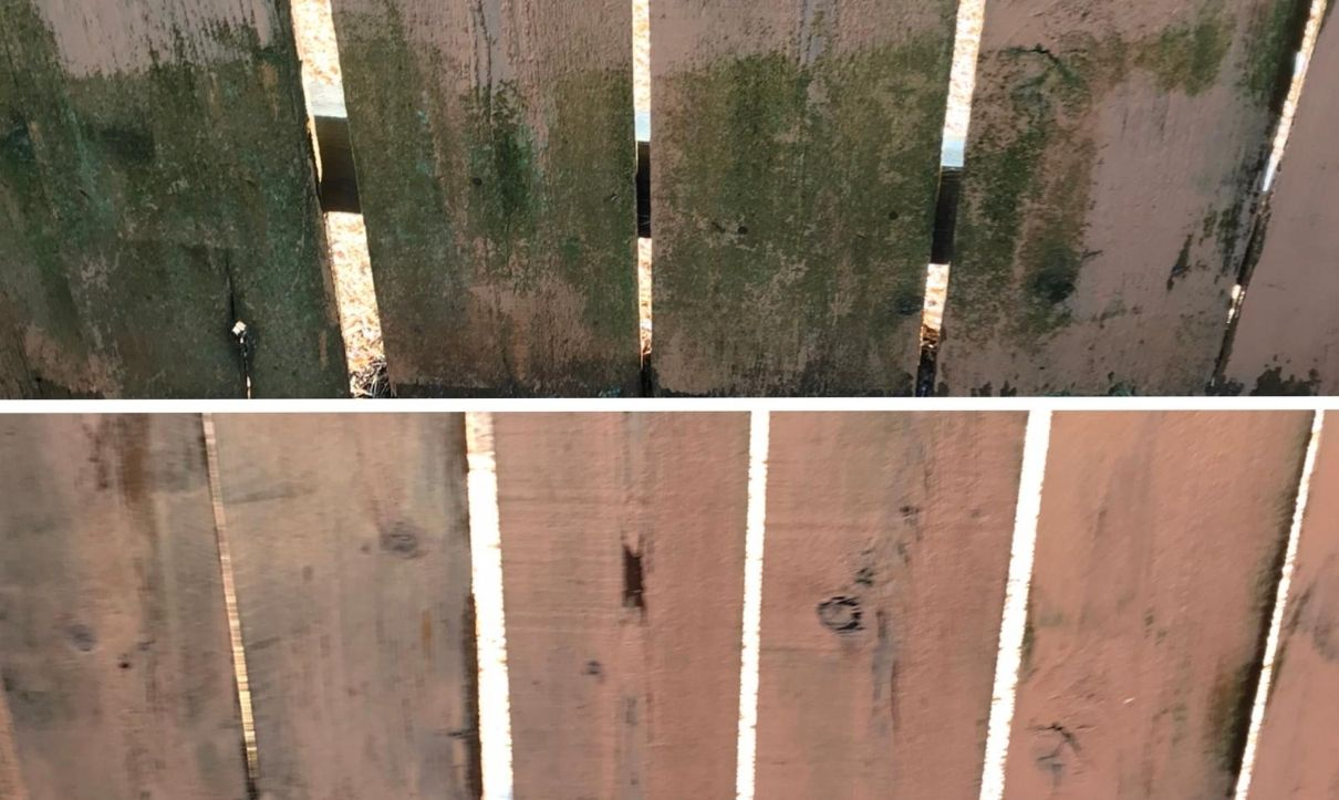 Best Fence Cleaning Services Provider in Salem