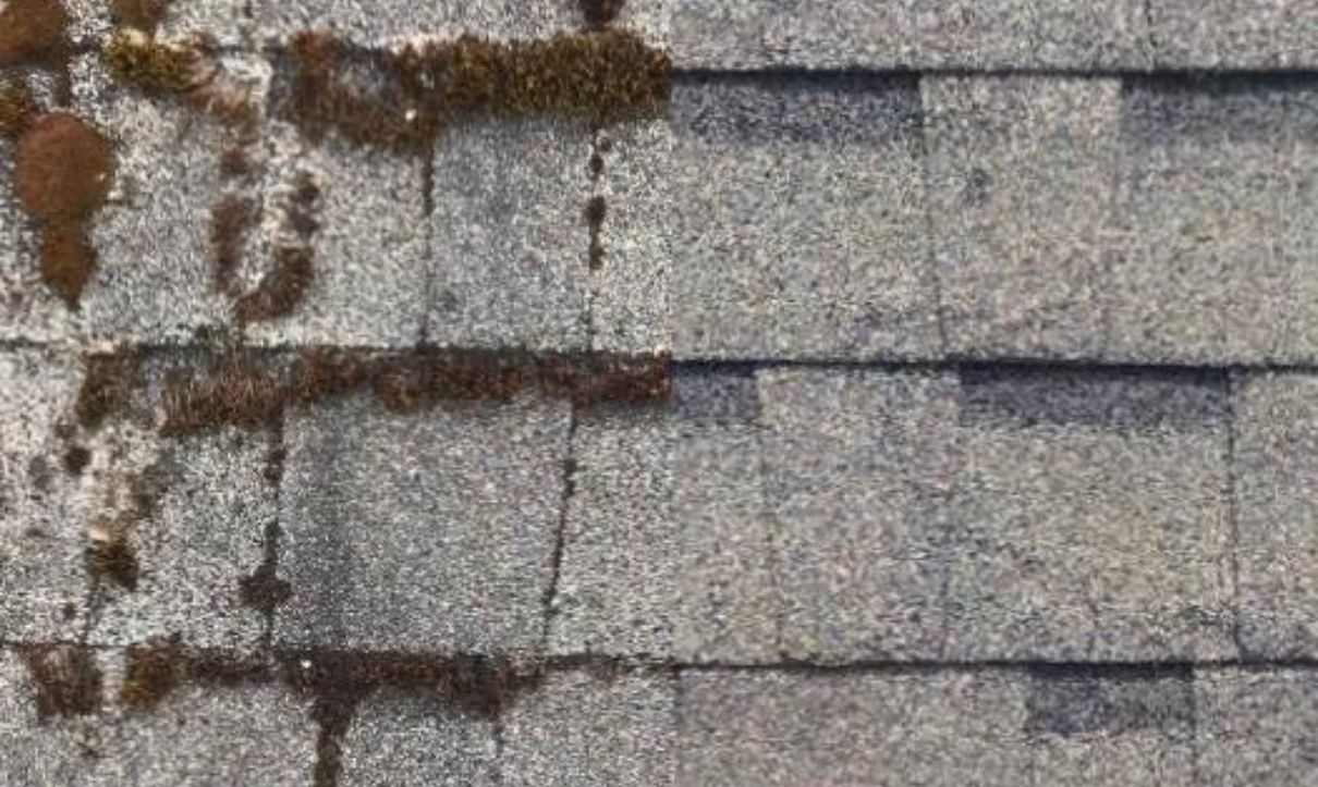 Roof Washing Service Provider in Salem, United State America